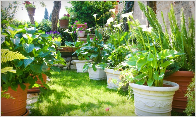 terracotta flower pots wholesale